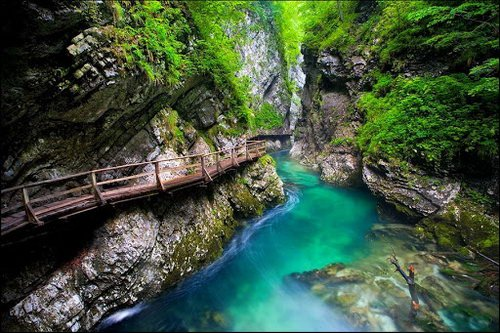 Веб-камеры Гуамское ущелье