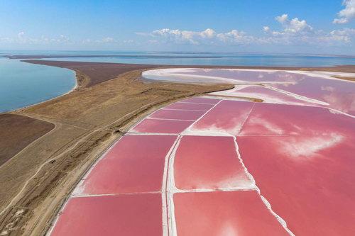 Веб-камеры Арабатская стрелка Розовое озеро